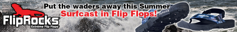 FlipRocks-Web-Banner
